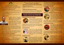 Introduction to Ayurveda & Ayurvedic food Melbourne (CBD) Traditional Massage 2 _small