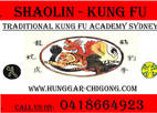 Experience Traditional Kung Fu for a better you Greystanes Meditation Retreats
